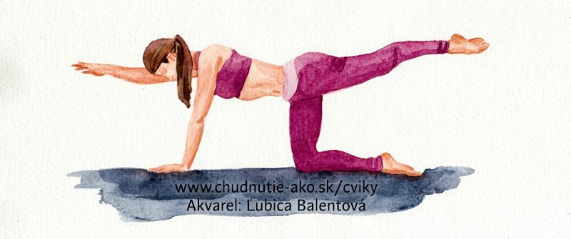 Klasické cvičenie na chrbát a medzilopatkové svalstvo