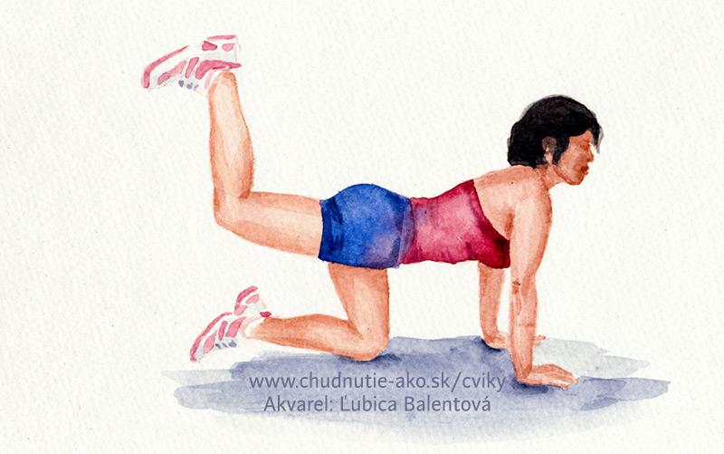 Zakopávačky - klasický cvik na spodný chrbát